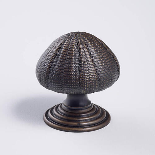 Sea Urchin shell door knob
