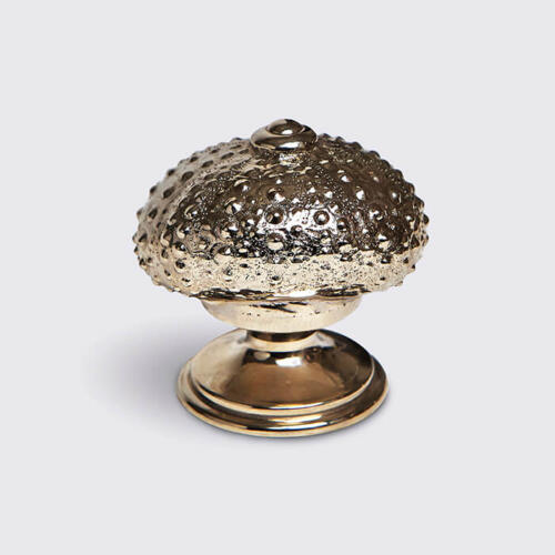 Urchin cabinet handle shell door hardware